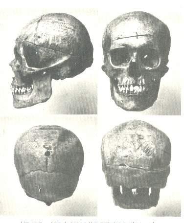 restos craneo Vaimaca